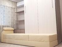 Шкаф-кровать диван подсветка